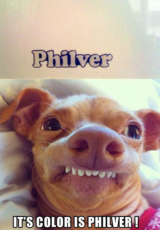 Philver…