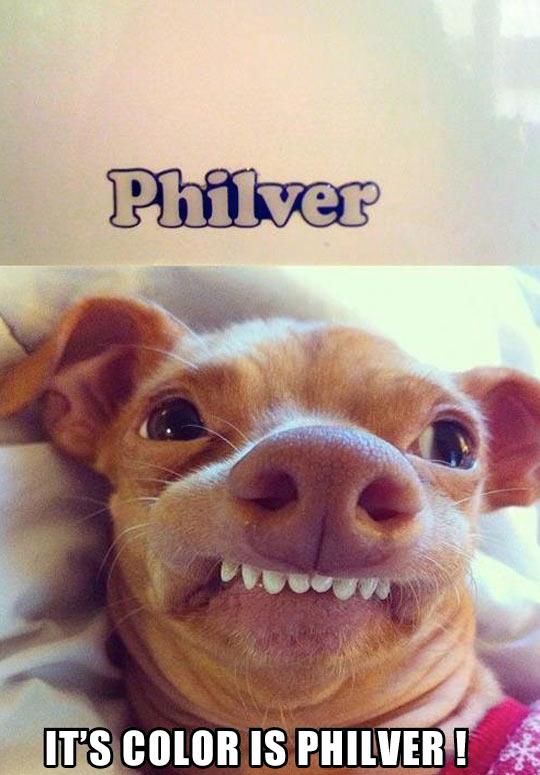 Philver…