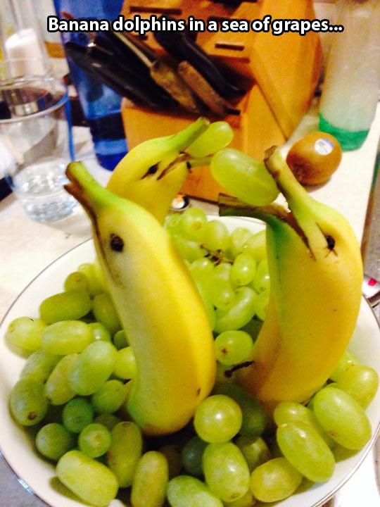 Banana dolphins…