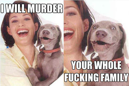 funny-family-photo-dog-smile-stare