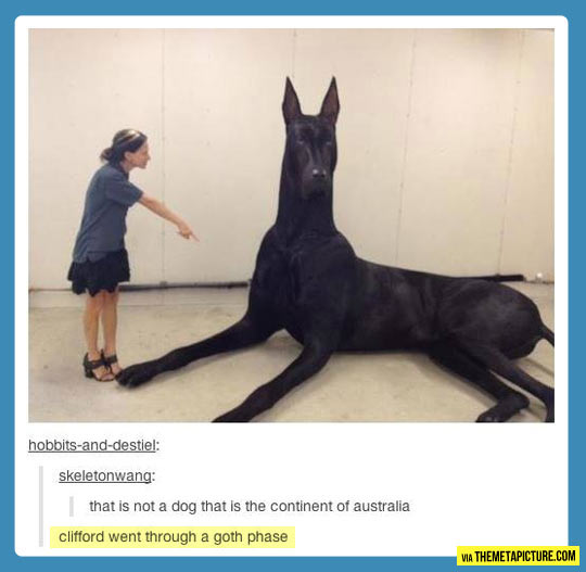 Gigantic dog…