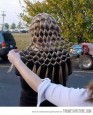 Net hairstyle