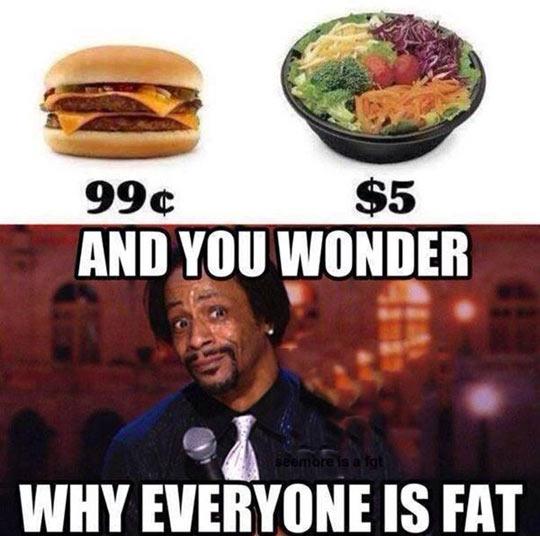 funny-hamburger-salad-cheap-fat