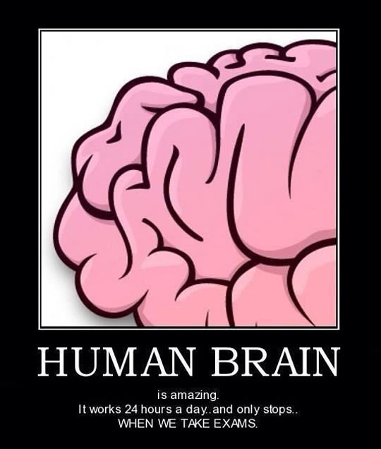 Human brain is greatest one…