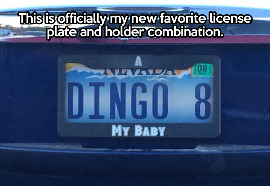 New favorite license plate…