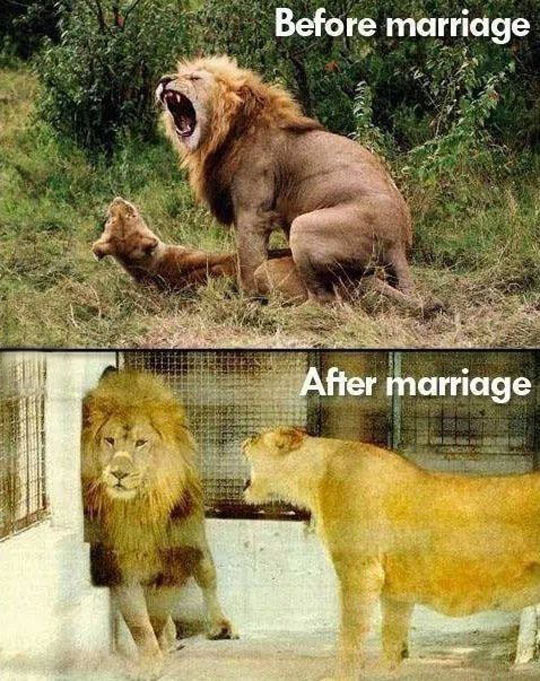 How marriage works…