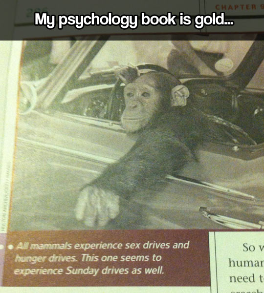 Psychology book…