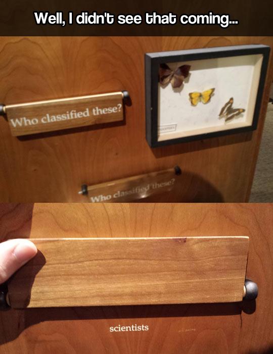 Museum sense of humor…