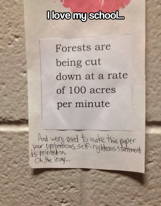 funny-note-forests-paper-written