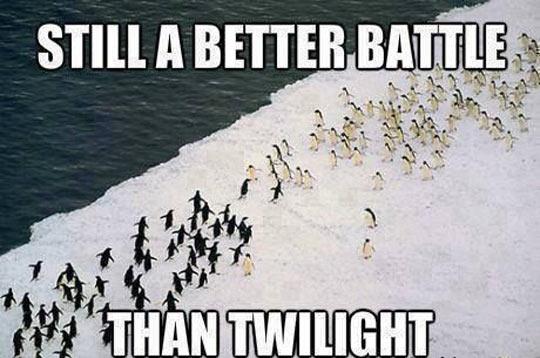 Antarctica's epic battle…