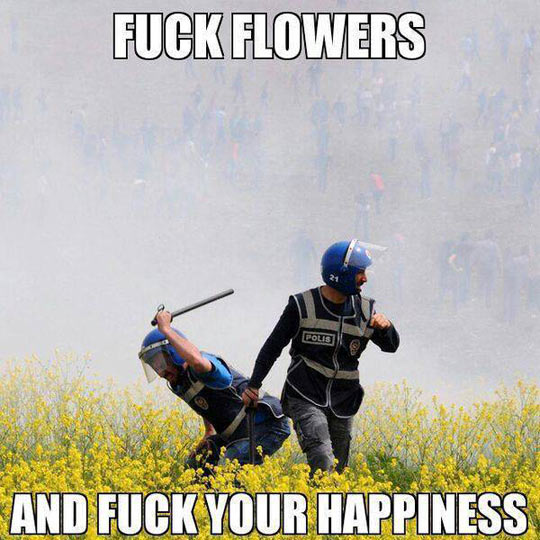 Take that flowers…