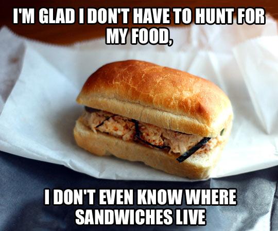 Glad I don't have to hunt…