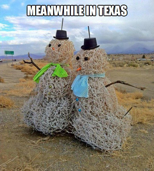 There are snowmen in Texas too…