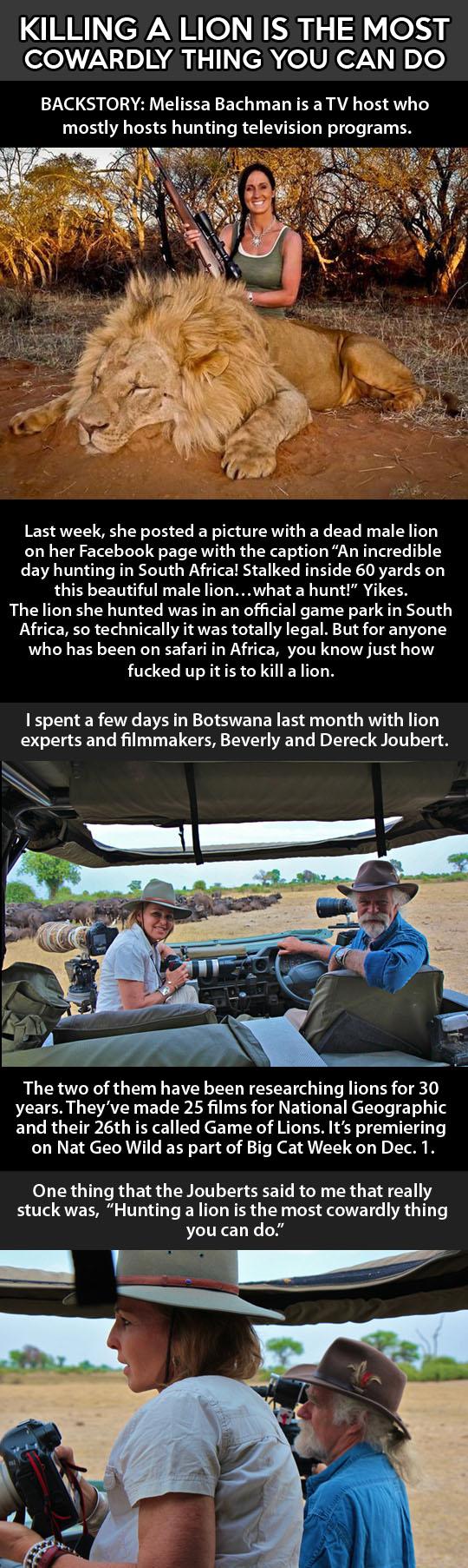 lion-host-hunter-Africa-gun-Bachman