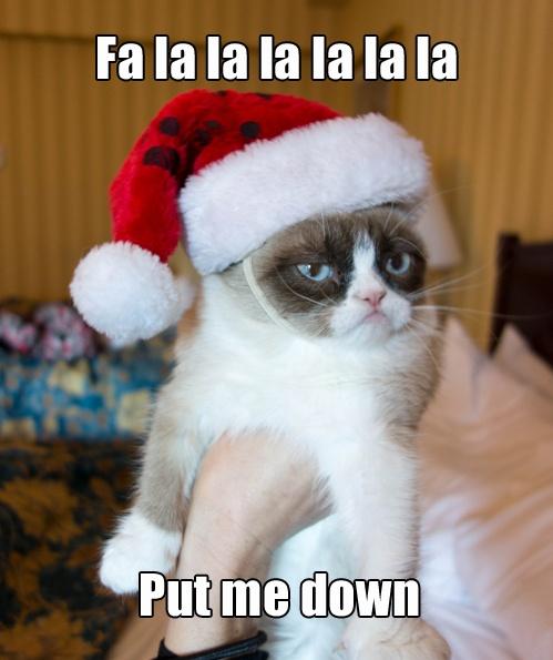 14 More Holiday Pets2