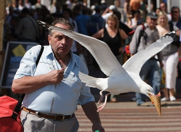 21 of the Most Perfectly Timed Photos Ever2