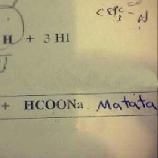 29 Test Answers That Are Totally Wrong But Hilarious18