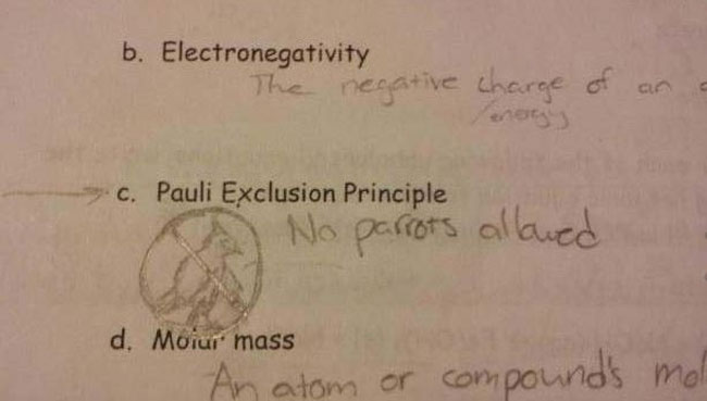 29 Test Answers That Are Totally Wrong But Hilarious3