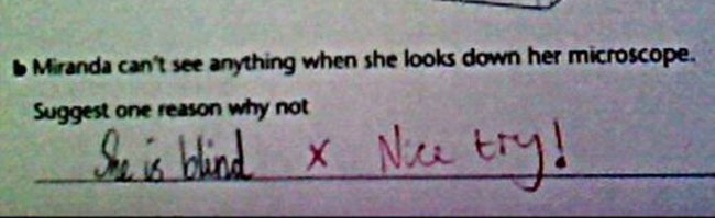 29 Test Answers That Are Totally Wrong But Hilarious8