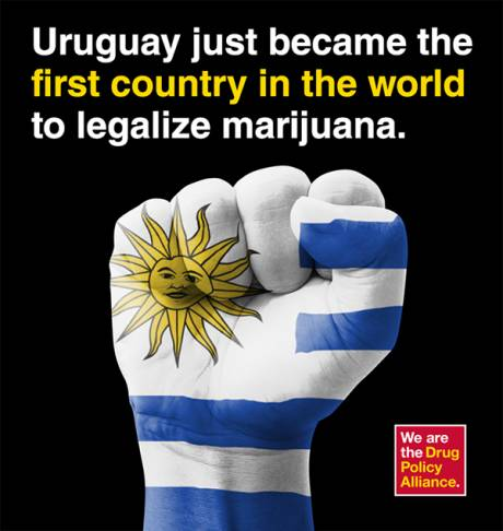 cannabis uruguay essay Economic benefits of marijuana legalization by nikola kovic submitted to  same states in us (colorado) and worldwide (uruguay) have recently changed.