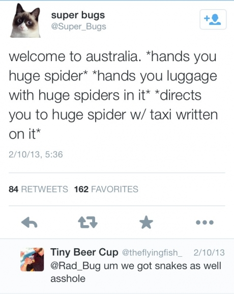 Found a twitter post that accurately sums up Australia
