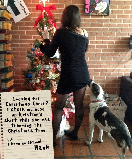 The Best of Dog Shaming – Christmas (21 pics)1