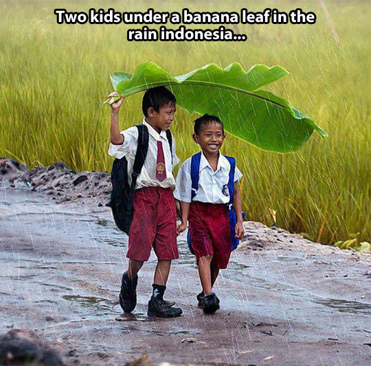 Two friends and a banana leaf