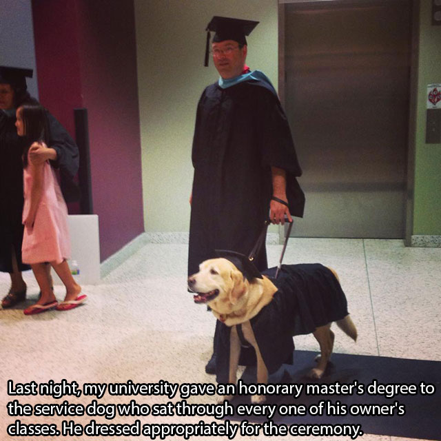 awesome_pet_owners_13