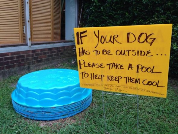 awesome_pet_owners_18