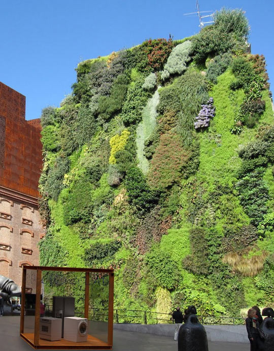 Vertical garden in Madrid…