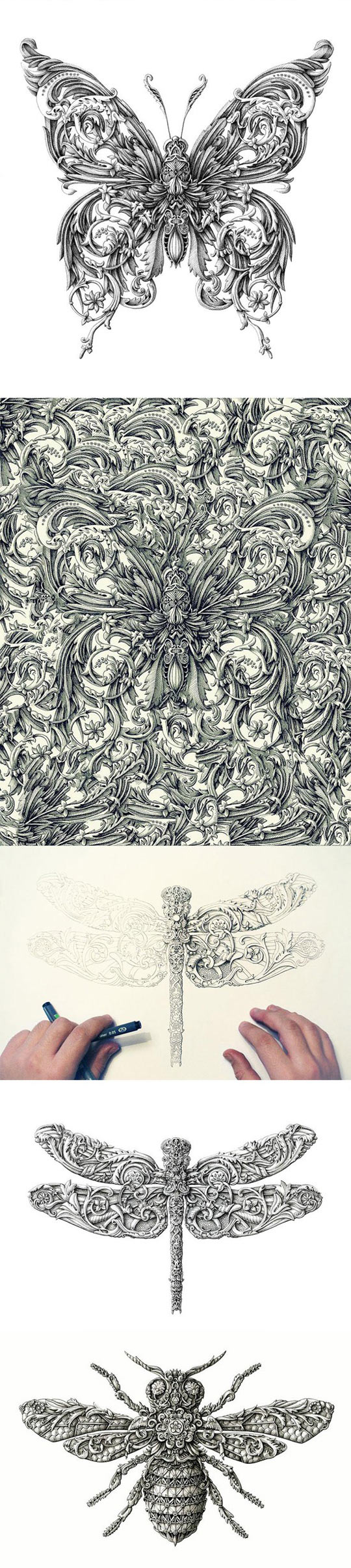 cool-bugs-drawings-paper-pen