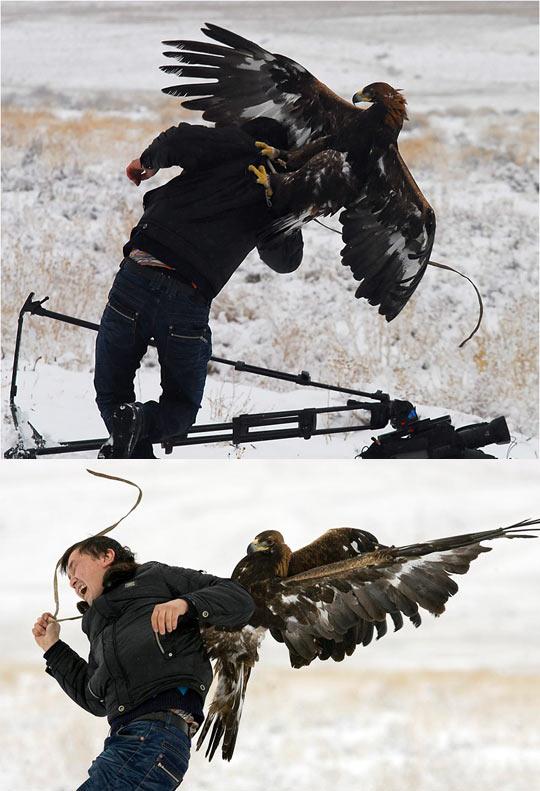 cool-eagle-haunter-snow-camera