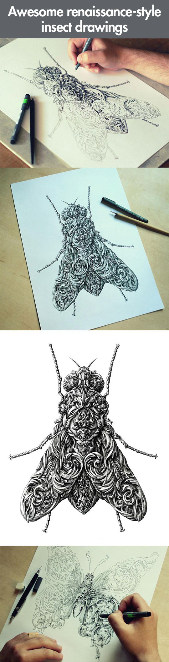 cool-insect-drawings-paper-pen