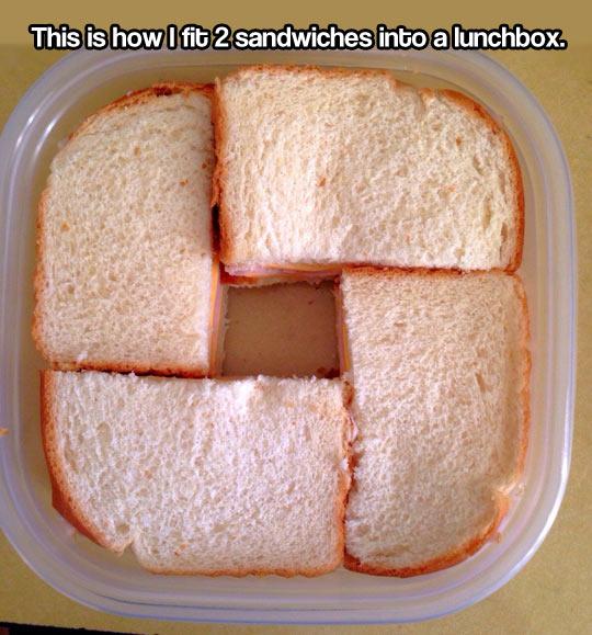 cool-lunchbox-sandwich-fit-organized