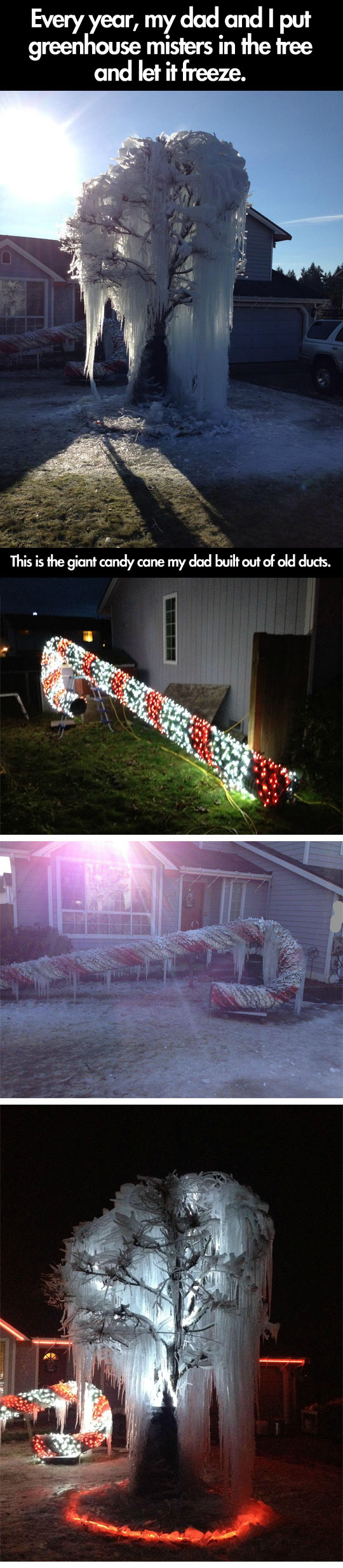 Awesome decoration for Christmas...