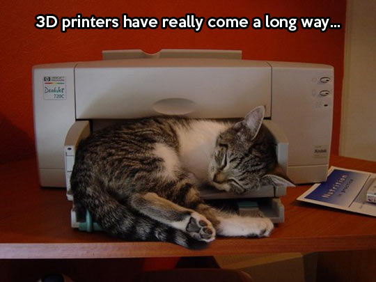 3D printers can print everything…