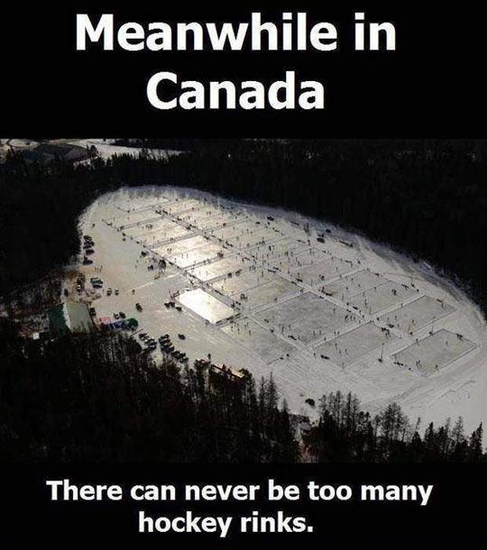 funny-Canada-hockey-rinks-snow-forest