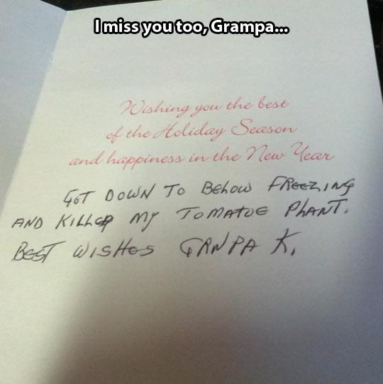 funny-Christmas-card-grandpa-letter