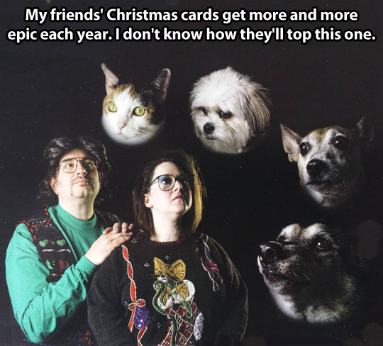 funny-Christmas-cards-pets-epic-couple