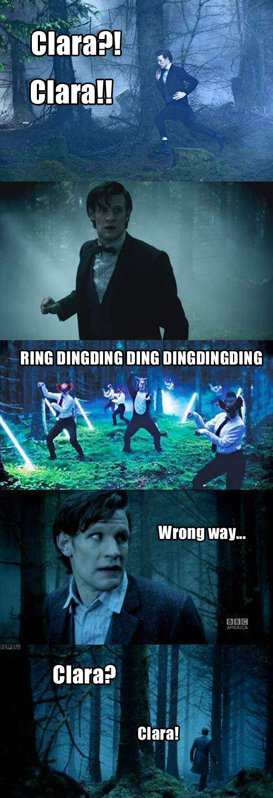 funny-Doctor-Who-Fox-song