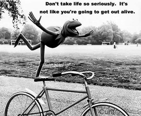 funny-Kermit-frog-life-serious