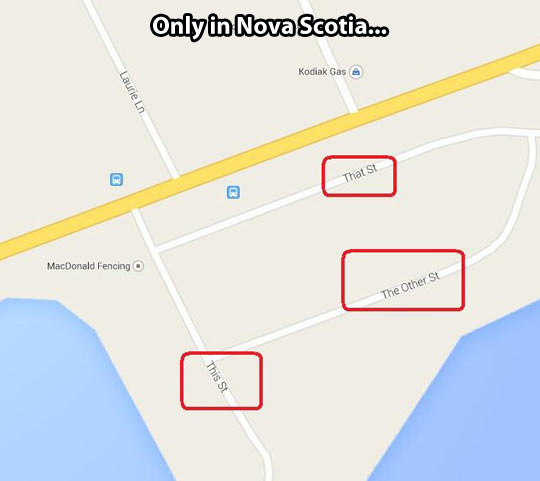 Nova Scotia creativity…