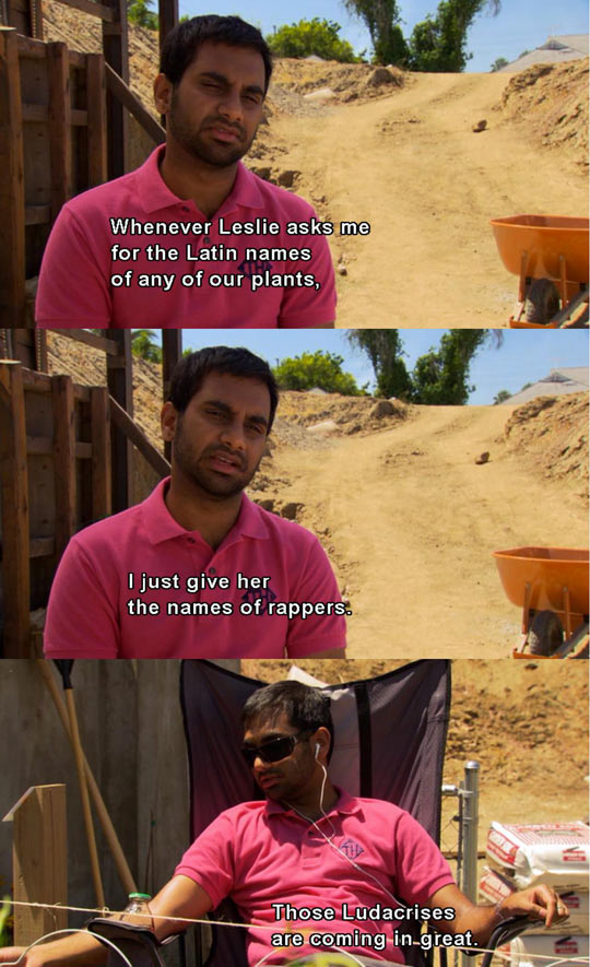 My favorite parks and recreation moment
