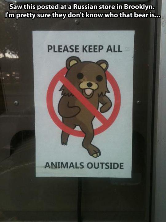 funny-Pedobear-prohibition-door-animals