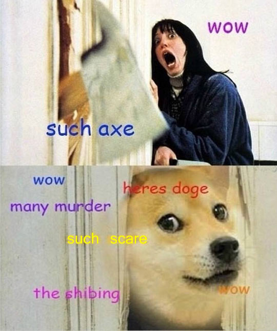 Overexcited doge…