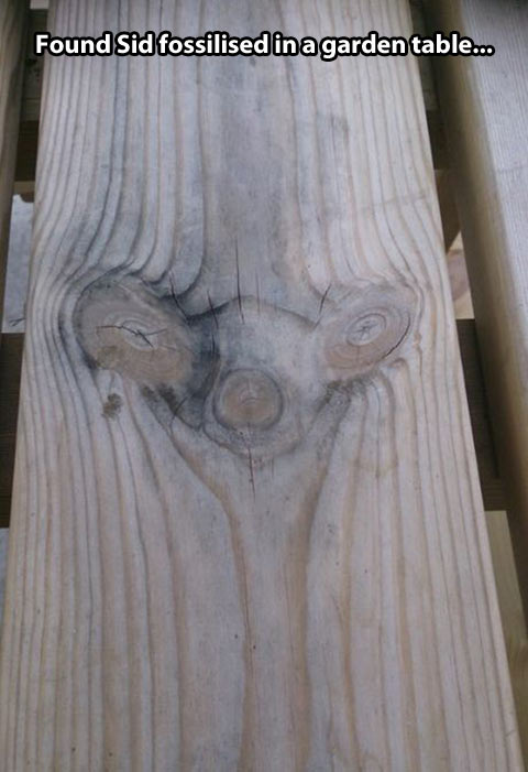 funny-Sid-Ice-Age-garden-table