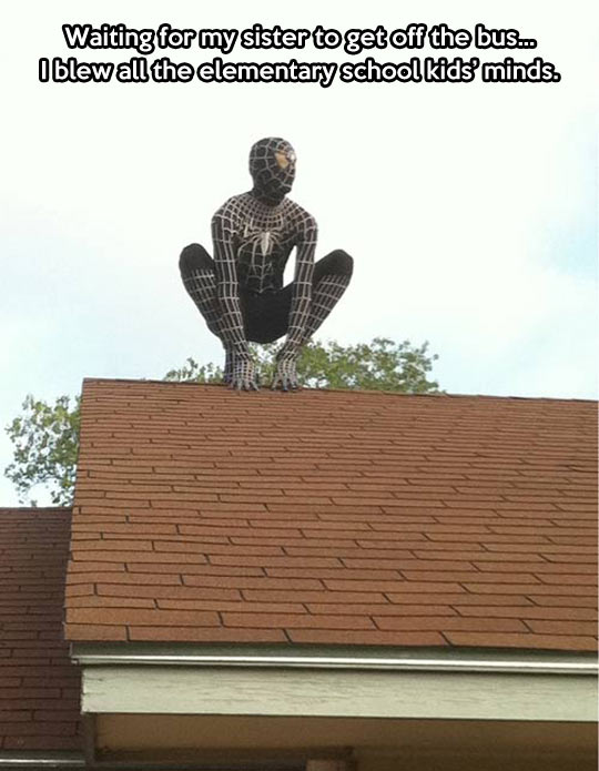 funny-Spiderman-roof-black-watching