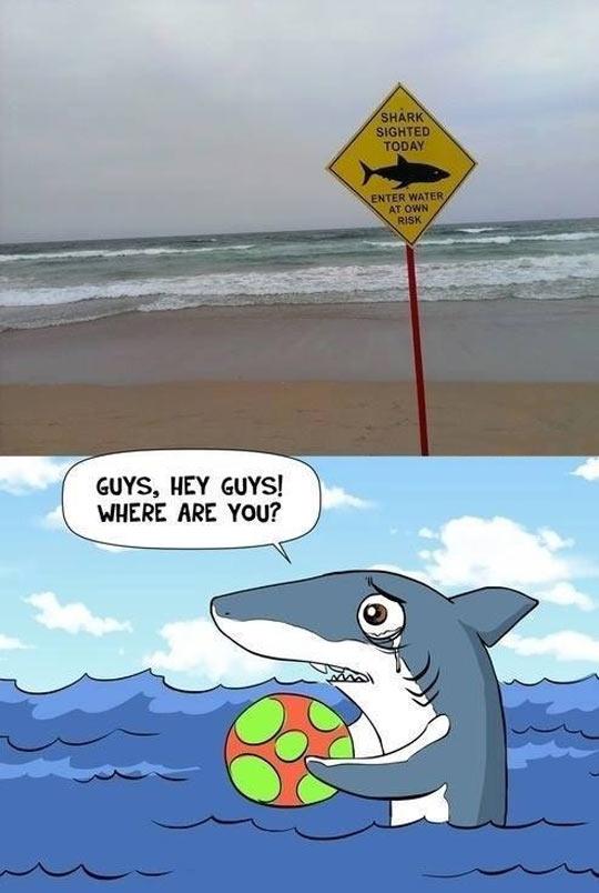funny-beach-shark-sea-cloudy-sad-ball
