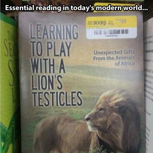 A book everyone should read…