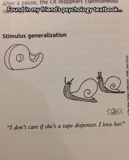 funny-book-snail-tape-dispenser-psychology